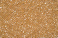 Soybean Pattern Background Royalty Free Stock Photo