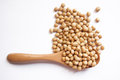 Soybeans the soybean us or soya bean uk is a species of legume native to east asia widely grown for its edible bean which has Royalty Free Stock Photo