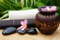 Spa alternative treatment Royalty Free Stock Photo
