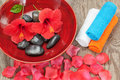 Spa arrangement of flower petals. Royalty Free Stock Photo