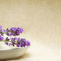 Spa - blurred background with aroma herbs Royalty Free Stock Image