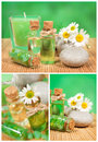Spa collage with camomile theme photo Royalty Free Stock Photo