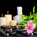 Spa composition of hibiscus flower bamboo thai herbal compress ball beads and candles on zen basalt stones with drops closeup Royalty Free Stock Image