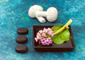 Spa composition: pink flowers, spa stones and massage balls