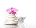 Spa concept massage stones with orchid plumeria flower Royalty Free Stock Photography