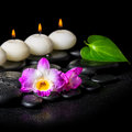 Spa concept of orchid flower, green leaf and row white candles Royalty Free Stock Photo