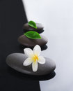 Spa concept zen stones Royalty Free Stock Photo