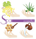 Spa cosmetics and icon for all design Royalty Free Stock Image