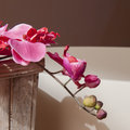 Spa decoration concept with orchid flowers Royalty Free Stock Photo