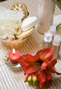 Spa flower Royalty Free Stock Photography