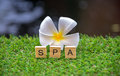 Spa flowers on a green background
