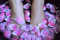 Spa foot massage health woman flower relax therapy asian Royalty Free Stock Photo