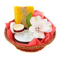 Spa gift basket Stock Photos