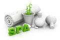 Spa massage setting with green pant background Stock Photo