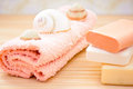 Daily spa objects, towel, soaps, shells Stock Image