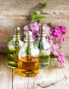 Spa perfume essential aroma oil glass bottles with flower blossoms on old wooden background Royalty Free Stock Photo