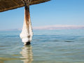 Spa resort of the dead sea at ein gedi israel sunny day Royalty Free Stock Photos