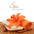 Spa setting over white background Royalty Free Stock Image