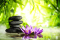 Spa still life with lotus and zen stone on water Royalty Free Stock Photo