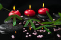 Spa still life of passiflora branch, pearl beads and red candles Royalty Free Stock Photo