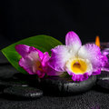 Spa still life of purple orchid dendrobium, green leaf Calla lil Royalty Free Stock Photo