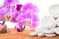 Spa still life with stone lilac orchid and towel on root wood background Stock Images