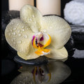 Spa still life of yellow flower orchid phalaenopsis with drops on black zen stones white towels and candles closeup Stock Photos