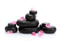 Spa stones with drops and pink petals Stock Photography