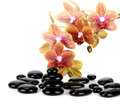 Spa Stones and Orchid flowers over white Royalty Free Stock Photo