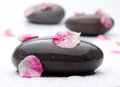 Spa stones with rose petals on white background Royalty Free Stock Photo