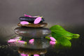 Spa stones with water drops and leaves Royalty Free Stock Images