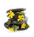 Spa stones with yellow flowers isolated on white Royalty Free Stock Photos