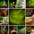 Spa theme photo collage composed different images Stock Photography