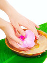 Spa therapy for hands healthy and painless manicure Stock Photo