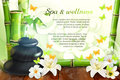Spa and wellness background
