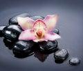 Spa Zen Stones Royalty Free Stock Photo