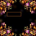 Space black fantasy bright background color banner there is plant Royalty Free Stock Photography