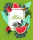 Space for text among watermelons, tropical leaves, butterflies, vector image
