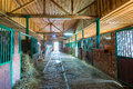 Spacious stables empty building Royalty Free Stock Photo