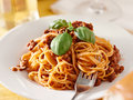Spaghetti with basil garnish in meat sauce closeup Royalty Free Stock Photo