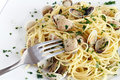 Spaghetti with clams closeup Royalty Free Stock Photography