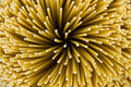 Spaghetti Noodles Stock Photography