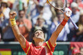 Spains david ferrer celebrates the victory during the davis cup final at oropesa del mar spain in april Stock Images