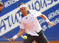 Spanish David Ferrer Royalty Free Stock Images