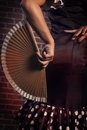 Spanish hand fan a of female flamenco dancer holding a Stock Photography