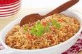Spanish Rice Royalty Free Stock Photo
