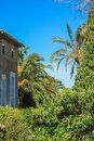 Spanish style house with plants and flowers located in Mallorca, Spain Royalty Free Stock Photo
