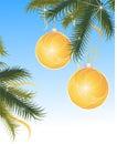 Sparkling christmas globes Stock Image