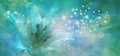 Sparkling Lilly Banner Royalty Free Stock Photo