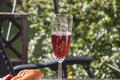 Sparkling rose wine a glass full of red at a barbeque party table Stock Image